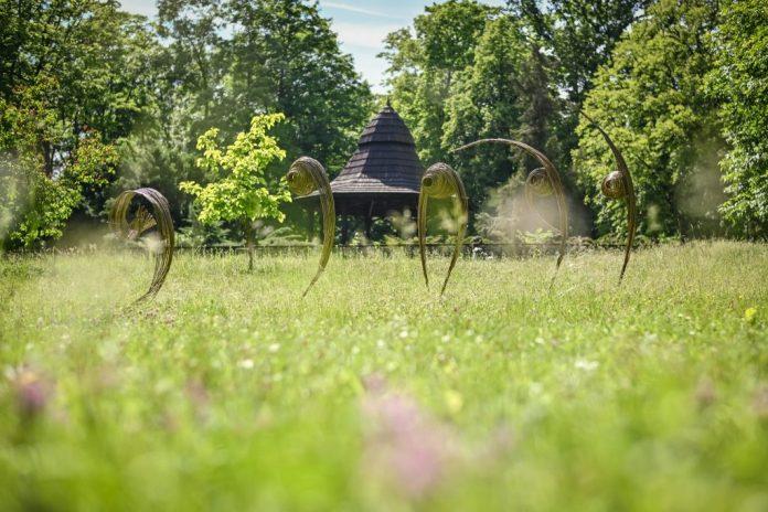 Widzieliście już wiklinowe rzeźby w Parku im. Staszica? Ich autorem jest Mirosław Maszlanko 9