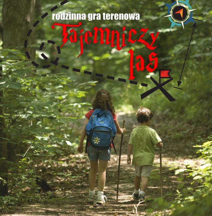 plakat tajemniczy las 2