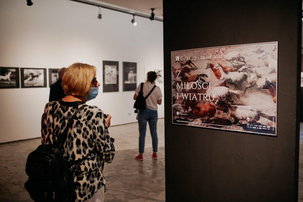 """Parada koni zainaugurowała w Częstochowie wystawę """"Z miłości i wiatru"""" [GALERIA ZDJĘĆ] 4"""