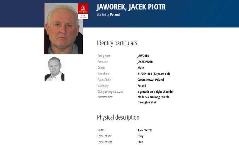 Zabójstwo w Borowcach. Jacek Jaworek poszukiwany czerwoną notą Interpolu 2