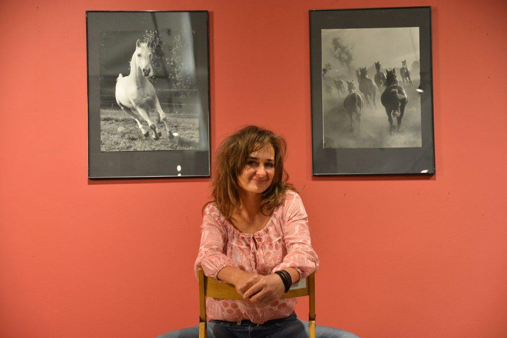 """W niedzielę w Częstochowie odbędzie się parada koni. To wydarzenie towarzyszące wystawie """"Z miłości i wiatru"""" 9"""