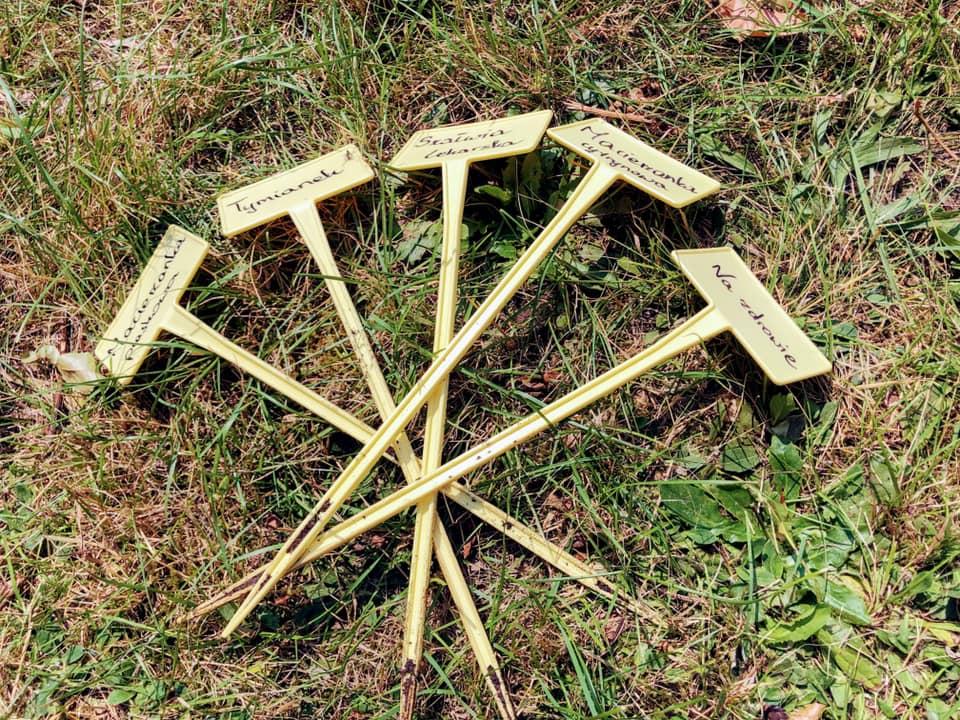 W Lublińcu powstał pierwszy ogródek ziołowy 4