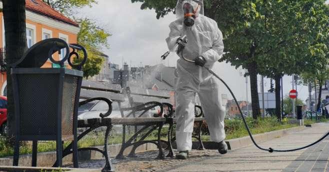 Częstochowa dezynfekuje ławki w sezonie pielgrzymkowym 2