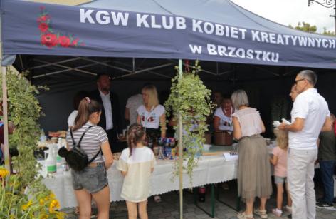 Impreza plenerowa Łowy Króla Kazimierza w Przedborzu 5