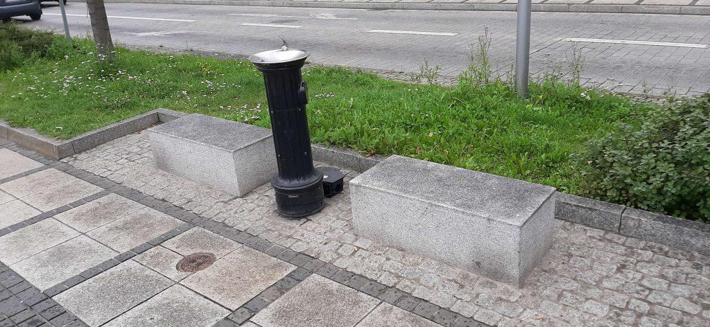 Tępią szczury w centrum Częstochowy 3