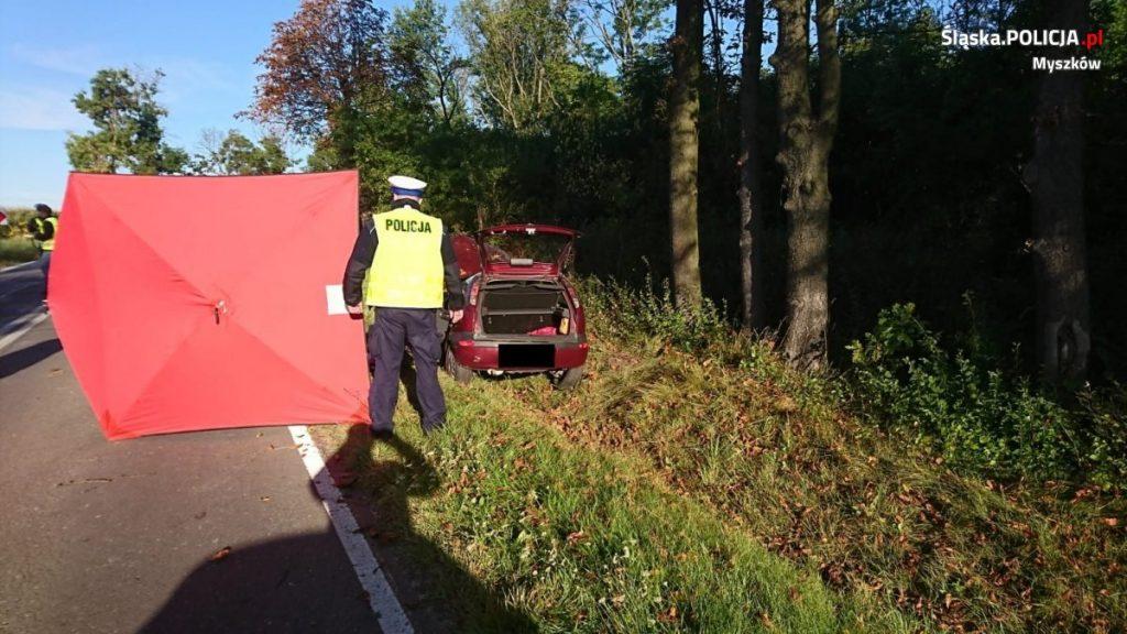 Śmiertelny wypadek w Myszkowie. Samochód uderzył w drzewo 3