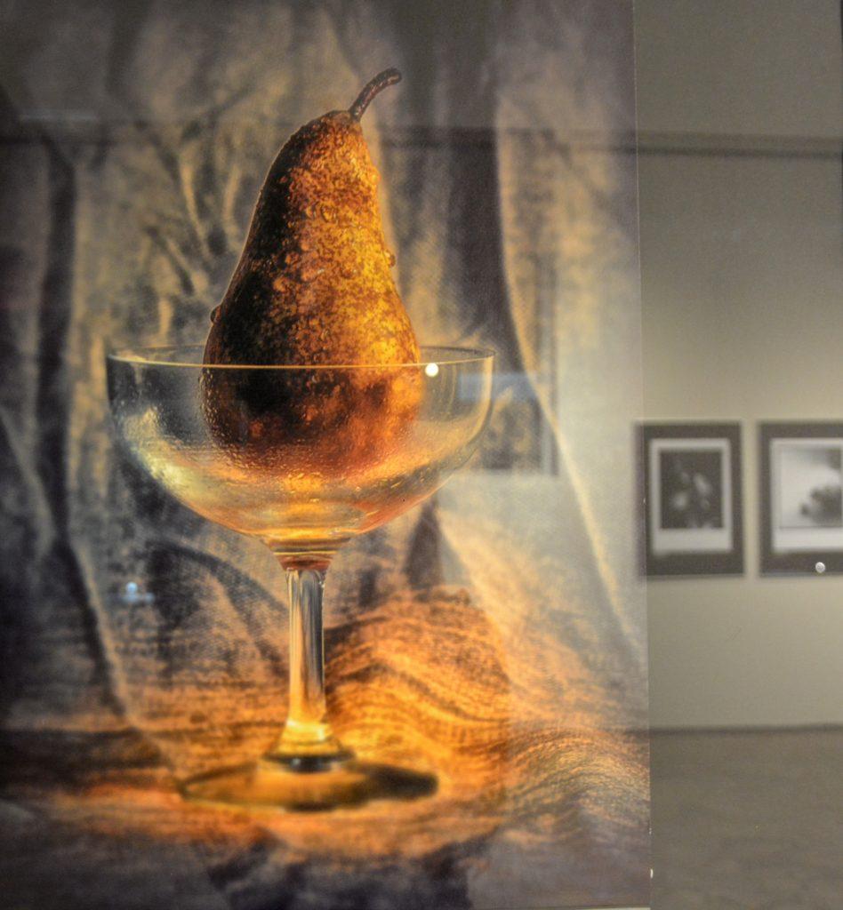 Częstochowska Miejska Galeria Sztuki otwiera dwie nowe wystawy 10