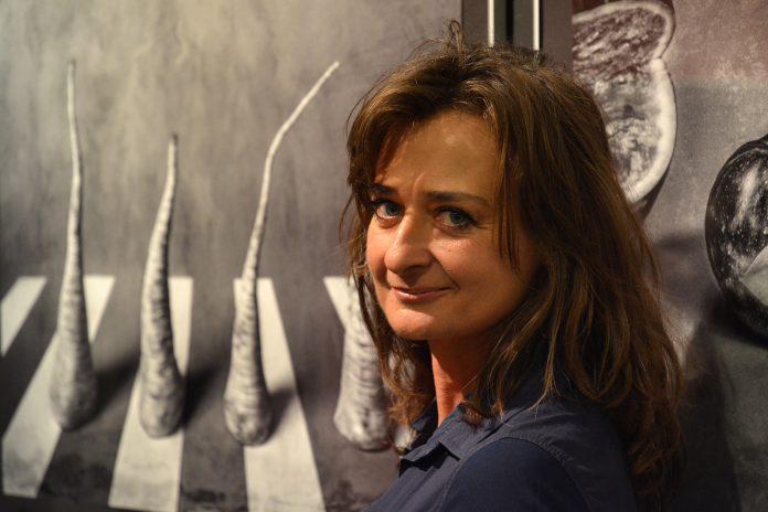 Częstochowska Miejska Galeria Sztuki otwiera dwie nowe wystawy 12
