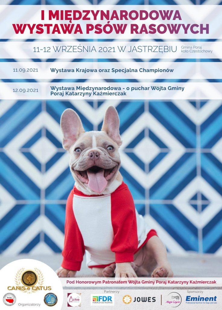 Dwudniowa wystawa psów rasowych 1