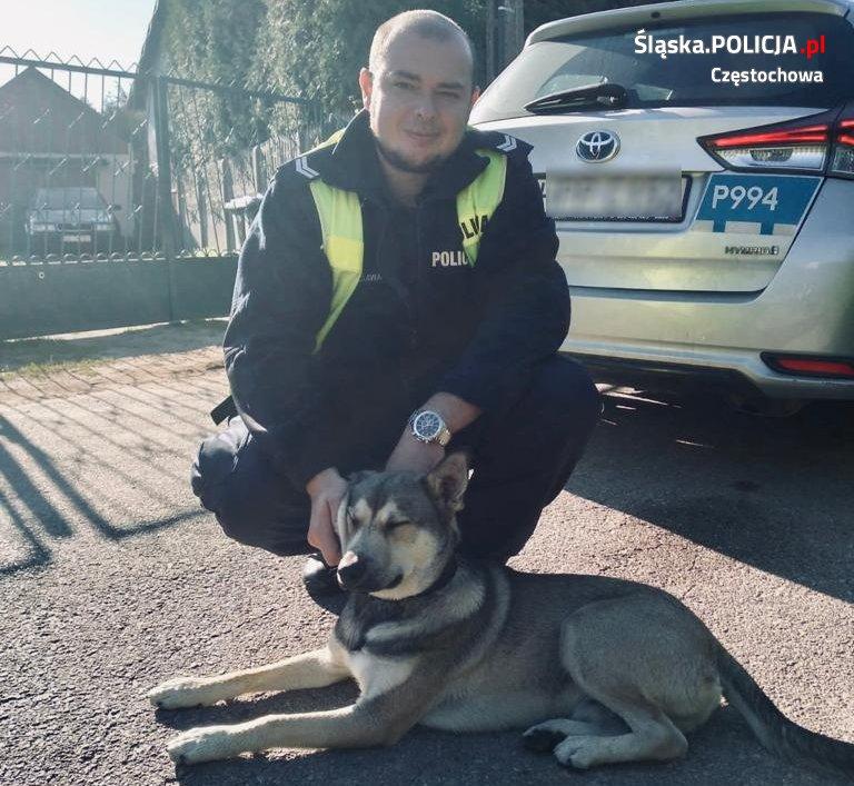 Policjanci zaopiekowali się zbłąkanym psem 2